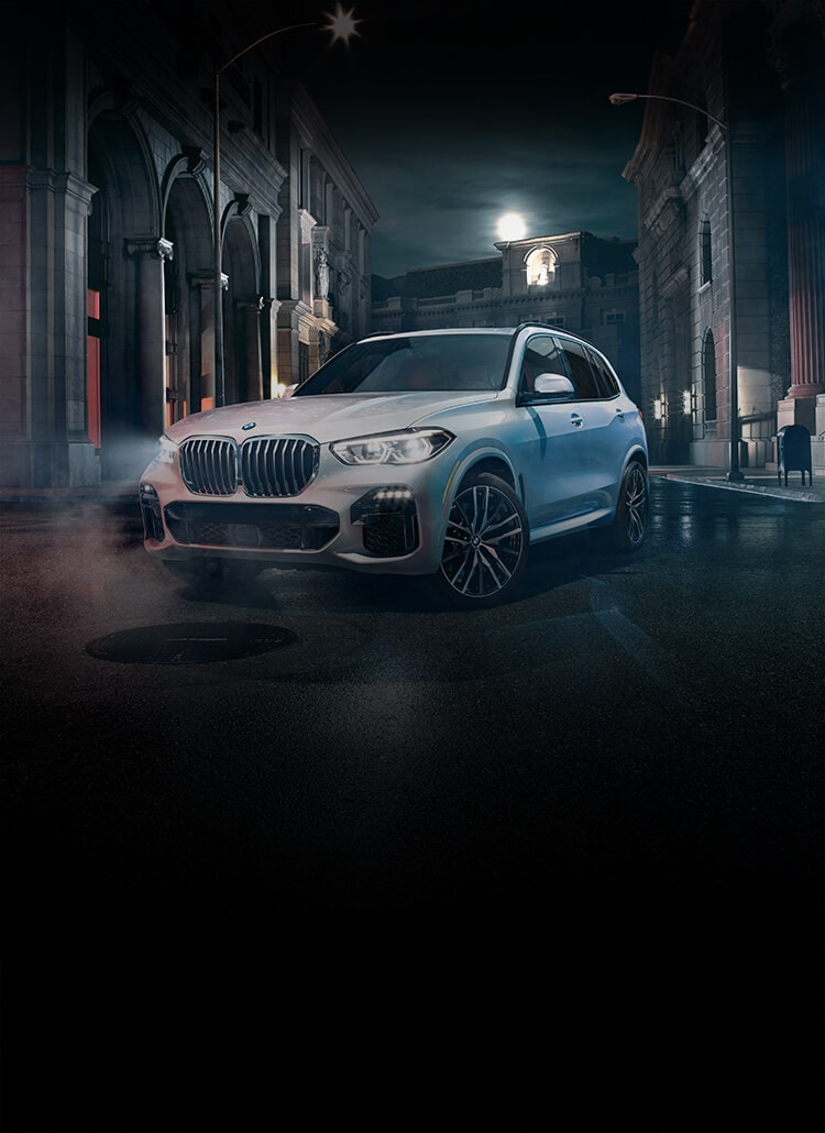 X5 Sports Activity Vehicle Bmw Usa